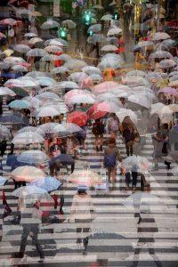Busy crossing (Tokyo, Japan)